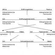 Das Prinzip der Eröffnungsbilanz (Q: Centipede, Wikipedia)